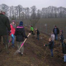 HOTSPOT-PROJEKT Grundschüler greifen für Naturschutz zur Schaufel