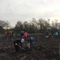 Pflanzaktion-Schulwald Papenburg-Klimaschutzwald 2.0